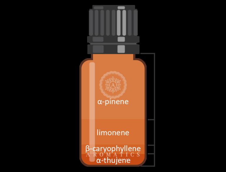 Frankincense Infografik_Aromatics Essence