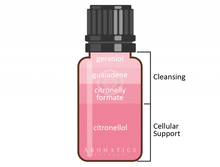 Itır Infografik_Aromatics Essence
