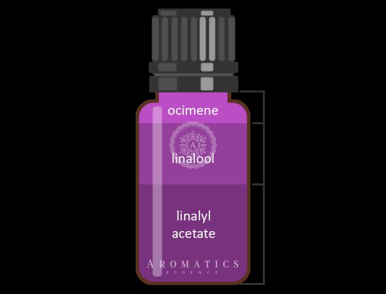 Lavanta Infografik_Aromatics Essence