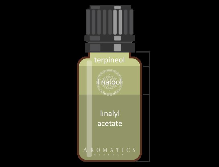 Petitgrain Infografik_Aromatics Essence